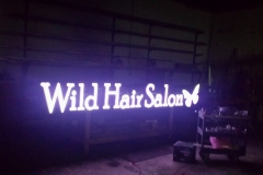 Wild Hair Salon Channel Letters